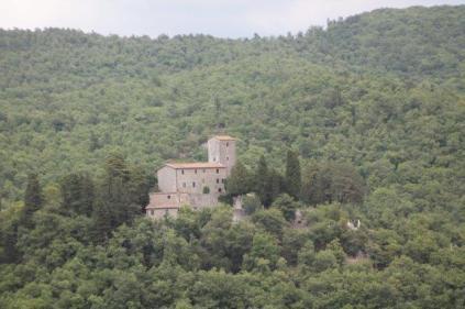 castello di albola (13)