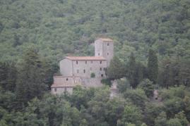 castello di albola (14)
