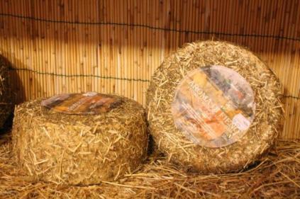 pecorino erborinato caseificio la fonte (1)