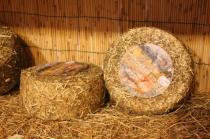 pecorino erborinato caseificio la fonte (2)