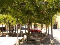 piazza marconi castelnuovo berardenga (2)