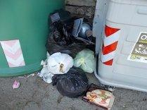 rifiuti berardenga villa chigi (4)