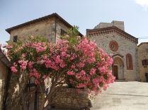 vertine chiesa oleandro