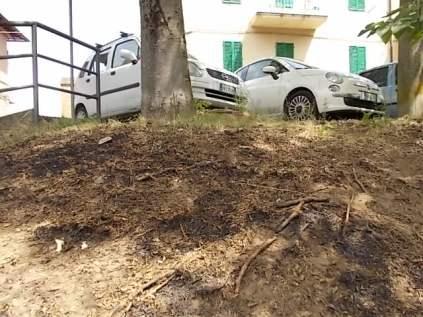 cassonetto bruciato porta pispini (10)