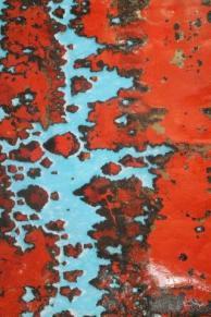 enzo gambelli personale antica querciolaia (6)