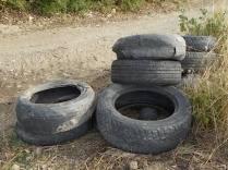 gomme auto abbandonate villa a sest (2)