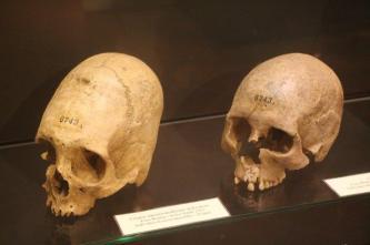 museo nazionale etrusco di chiusi (53)