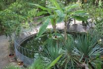 orto botanico siena (26)