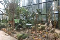 orto botanico siena (40)