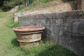 orto botanico siena (52)