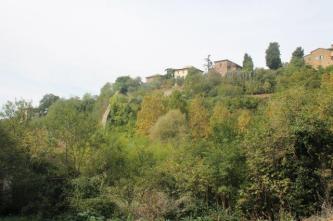 orto botanico siena (60)