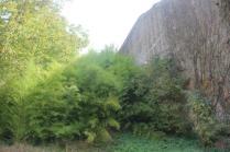 orto botanico siena (62)