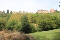 orto botanico siena (64)