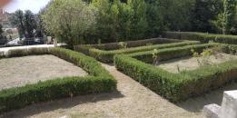 taglio erba villa chigi castelnuovo berardenga (7)