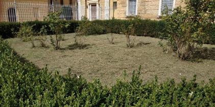 taglio erba villa chigi castelnuovo berardenga (8)