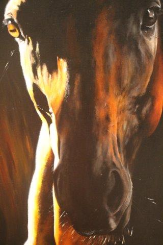 cavalli d'autore mostra al santa maria della scala (25)