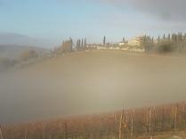 vertine e nebbia (1)