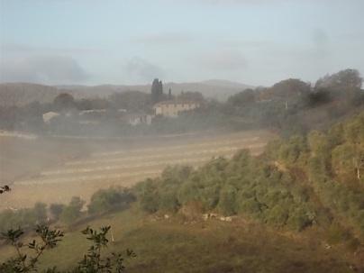 vertine e nebbia (10)