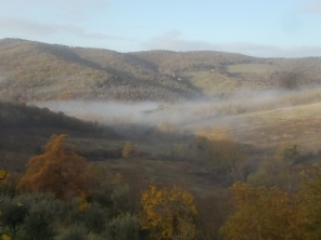 vertine e nebbia (11)