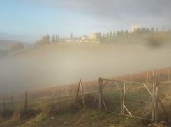 vertine e nebbia (2)