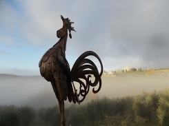 vertine e nebbia (3)