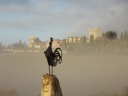 vertine e nebbia (4)