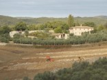 vigna a terrazze chianti vertine (10)