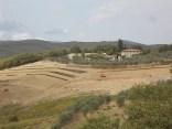 vigna a terrazze chianti vertine (8)