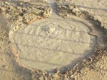 acqua borra nasce nuova sorgente termale (1)