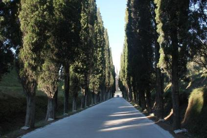 montepulciano cippi illeggibili guerra 15 - 18 (1)
