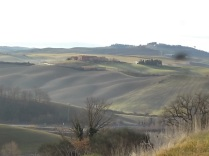 nebbia berardenga guistrigona crete (8)