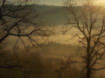 vertine, spaltenna nebbia 16 gennaio (1)