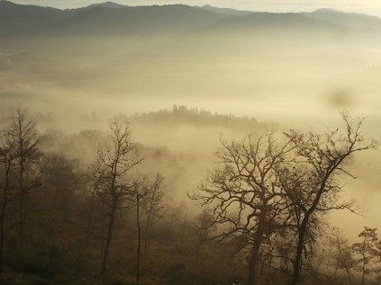 vertine, spaltenna nebbia 16 gennaio (12)