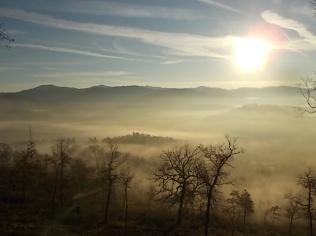 vertine, spaltenna nebbia 16 gennaio (15)