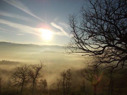 vertine, spaltenna nebbia 16 gennaio (16)