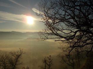 vertine, spaltenna nebbia 16 gennaio (18)