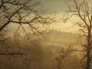 vertine, spaltenna nebbia 16 gennaio (2)