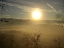 vertine, spaltenna nebbia 16 gennaio (3)