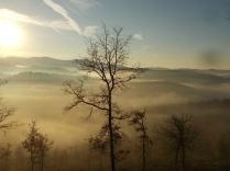 vertine, spaltenna nebbia 16 gennaio (5)