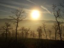 vertine, spaltenna nebbia 16 gennaio (7)
