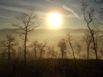 vertine, spaltenna nebbia 16 gennaio (8)