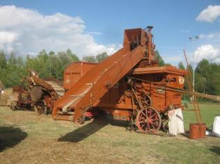 battitura del grano (4)