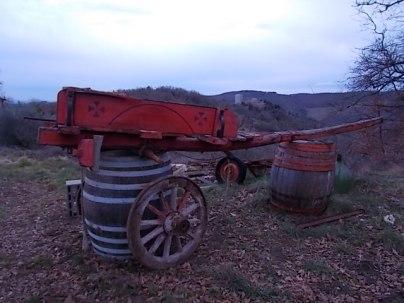 carro agricolo (3)