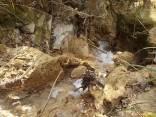 escursione borro parabuio e salsicce (17)