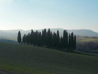 val d'orcia (7)