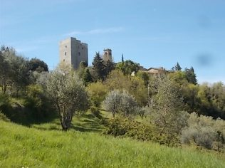 vertine tgr regionale toscana (9)