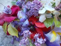 iris, lilla, melo, papavero, federica (19)