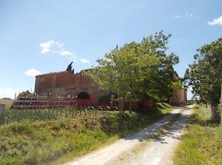 le cortine casa natale domenico beccafumi (7)