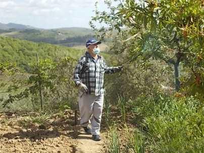 ramare l'orto vertine (4)