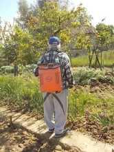 ramare l'orto vertine (5)